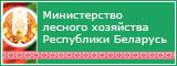 Министерство лесного хозяйства РБ